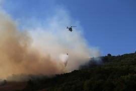 Yenişehir'deki orman yangınında yeni gelişme