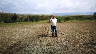 İznik gölü çekildi, balık ağları ortaya çıktı